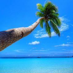 Welcome to paradise! Borocay island, Philippines @thwjc