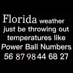 Fl Weather, Florida Weather, Power Balls, Florida Girl, Funny Quotes, Girl Stuff, Daily Inspiration, Funny Stuff, Energy Balls