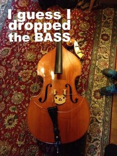 music humor   Tumble I shouldn't find it this funny...