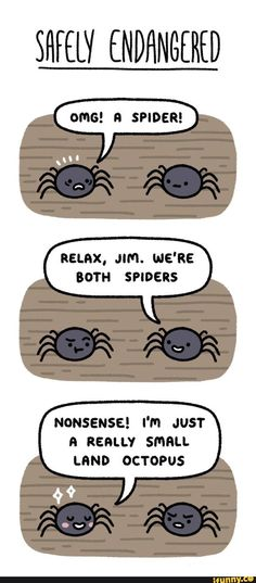 comic, lol, land, octopus, spiders