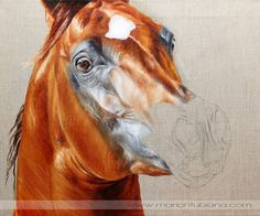 1000+ ideas about Pintura De Cavalo on Pinterest | Pinturas do ...