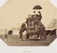 indophilia:  Lady Canning on an elephant c1858-61