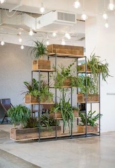 choose an interesting vessel (like this plant basket wall!)