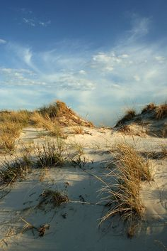 Jones Beach State Park, New York here every week several days a week ! Trisha