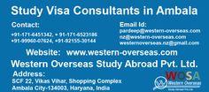 Western Overseas: Study visa consultants in Ambala, Study immigration consultants in Ambala, Study in Australia, Study in New Zealand, Study in Canada, Study in Ireland