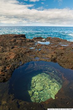 Take A Dip In Hawaii's Crystal Clear Tide Pools