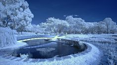 Gardens by alfredodarmadja1 via http://ift.tt/2hIIEZi