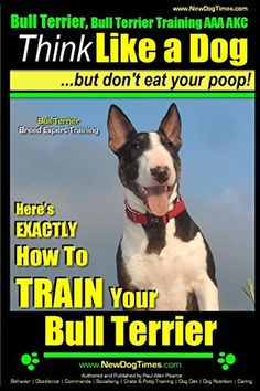 Bull Terrier, Bull Terrier Training AAA AKC: Think Like a Dog, but Don't Eat…