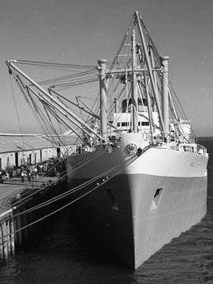 MS Port Sydney - John Whitehead - Senior Engineer - Page 3 Merchant Navy, Merchant Marine, Seafarer, Page 3, Historical Photos, Sydney, Ms, Engineering, Ships