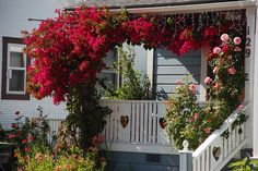 sweet porch