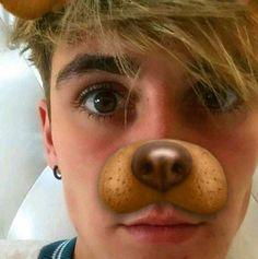 😍😍😍 I want this dog Omaha Squad, I Meet You, Magcon, Breakfast, Food, Morning Coffee, Essen, Meals, Yemek