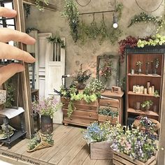 Mini herb and flower room.Wonderful detail for miniatures!Simply amazing miniature by Hiromi Fujii.Miniature garden room, is so pretty Miniature Plants, Miniature Rooms, Miniature Houses, Miniature Furniture, Dollhouse Furniture, Miniature Gardens, Haunted Dollhouse, Dollhouse Miniatures, Minis