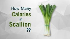 Healthwise: How Many Calories in Scallion (Green Onion)? Calories Intake & Healthy Weight Loss by EnViata @ https://youtu.be/ZpKNl4cMgeg