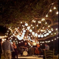 Adam &Ivy's rustic outdoor DIY wedding. The jazz band made the night.