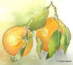Two oranges = Las dos naranjas = Les deux oranges Sold