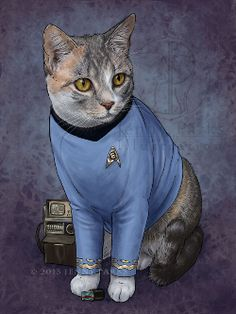 STAR SHIP SCIENCE OFFICER....Just look at those pointy ears. Jenny Parks illustrations