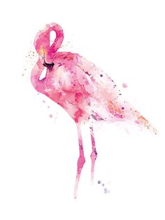 Flamingo Print Watercolor Pink Flamingo Painting Bird by artsaren