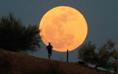 A runner makes his way along a trail on a butte in front of the moon at Papago Park in Phoenix on May 5, 2012. (Darryl Webb/Reuters)