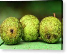 Print. Green pears on the boards. Fineartamerica. Canvas Prints, Framed Prints, Acrylic Prints, Metal Prints, Posters, and More!