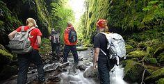 Backpacking across New Zealand  www.transfercar.co.nz