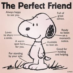 Snoopy, Dogs, The perfect friend Comics Peanuts, Peanuts Cartoon, Peanuts Snoopy, Peanuts Movie, Peanuts Quotes, Snoopy Quotes, Snoopy Pictures, Funny Quotes, Life Quotes