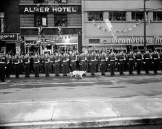 Royal Tour military lineup with dog VPL Accession Number: 46063 Date: October, 1951 Photographer/Studio: Province Newspaper. http://www3.vpl.ca/spe/histphotos/