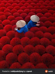 Incense in Vietnam : oddlysatisfying Street Photography, Portrait Photography, Travel Photography, Rain Photography, Stunning Photography, Landscape Photography, Photography Ideas, Ho Chi Minh, Loop Gif