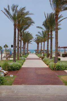 LEBANON, BEACH CLUB, VOILE BLEU..NICE