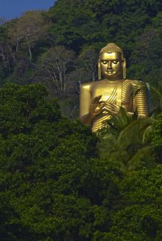 Dambulla, Sri Lanka. For the best of art, food, culture, travel, head to theculturetrip.com. Click http://bit.ly/CultureTripSLanka for everything a traveler needs to know about a trip to Sri Lanka.