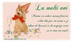 Winnie The Pooh, Cute Cats, Happy Birthday, Birthday, Pretty Cats, Happy Brithday, Winnie The Pooh Ears, Urari La Multi Ani, Happy Birthday Funny