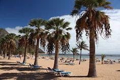 Palmenstrand Playa de las Teresitas