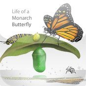 Life of a Monarch Butterfly is an interactive application for teaching the life cycle of a butterfly.   Free