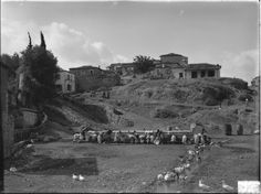 This photograph was taken by Nicholson Museum curator William J Woodhouse in Greece between 1890 and Queen's College, Museum Curator, Greece Travel, Geography, Dolores Park, England, Explore, Photograph, Spring