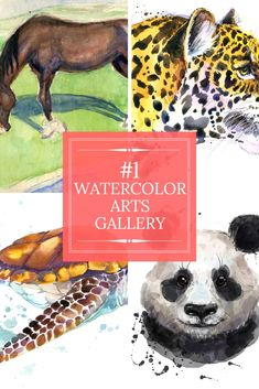 38 Best Watercolor Arts Albums - Browse Suggestions And Information Involving Watercolor Arts Today!