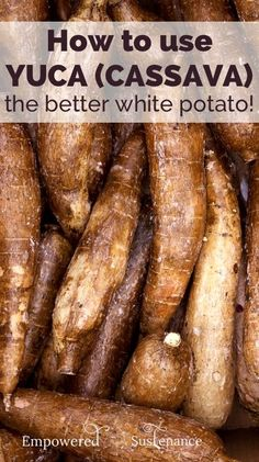 Everything you need to know about yuca, a paleo-friendly tuber, plus healthy yuca recipes #food #paleo #yuca