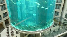 AquaDom at Radisson Blu Berlin