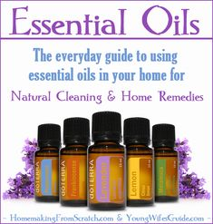 Essential Oils - The everyday guide to using essential oils in your home