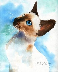 "Aquarelle, chat siamois. ""Tyne Tyne"" by Rachel Parker. Siamese Seal Chocolate Point cat."