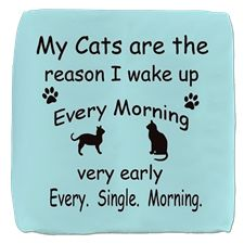 My Cats are the Reason I Wake Up Cube Ottoman