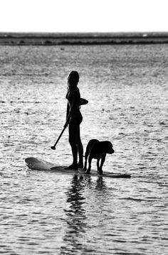 black and white SUP. #dog #standuppaddle stand up paddle www.paddlesurfwarehouse.com