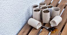 10 tolle Ideen mit Toilettenpapierrollen, die Sie noch nie gesehen haben! Nummer 3 ist großartig! - DIY Bastelideen