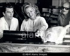 Download this stock image: Apr. 17, 2012 - Linda Christian and her new husband Edmund Purdom seen at Taormina; we could picture them in a tipic ''Sicilian' - E14B4Y from Alamy's library of millions of high resolution stock photos, Stock Photo, illustrations and vectors.