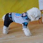 Perros Pantalones Rojo / Azul Ropa para Perro Invierno Rayas 2016 - $11.99