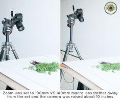 Zoom Lens VS Prime Lens | Food Photography Blog