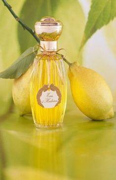 Perfume Bottle~ Annick Goutel ~ Le Hadrien