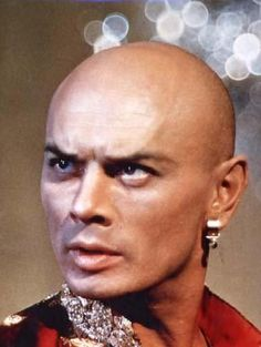 Yul Brynner!!! Oh my god whoever pinned this i love you so much!! Thank you lol