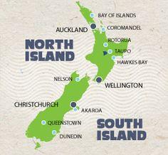New Zealand Whale Tour w Dr Ingrid Visser
