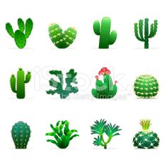 https://www.google.co.uk/search?q=cactus illustration