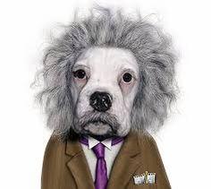 dibujos caras de perros - Buscar con Google