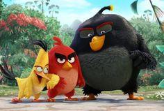 """Assista ao trailer de """"Angry Birds - O Filme"""""""